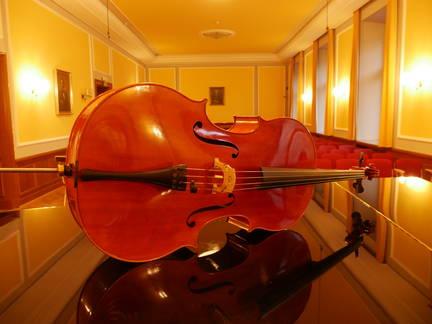 Cello built for Lukas Dreyer by Michael Ledfuß *March2019